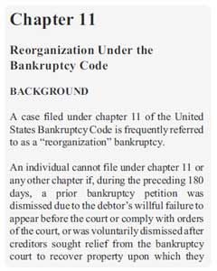 Chapter 11 US bankrupcy law